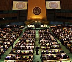 Brian Grim United Nations